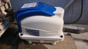 【浄化槽エアーポンプ、ブロワ、ブロア】交換方法やおすすめ機種